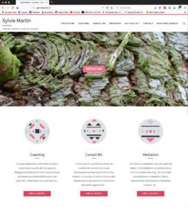 "<a href=""http://sylviemartin.fr/"">Site web : www.sylviemartin.fr </a>"